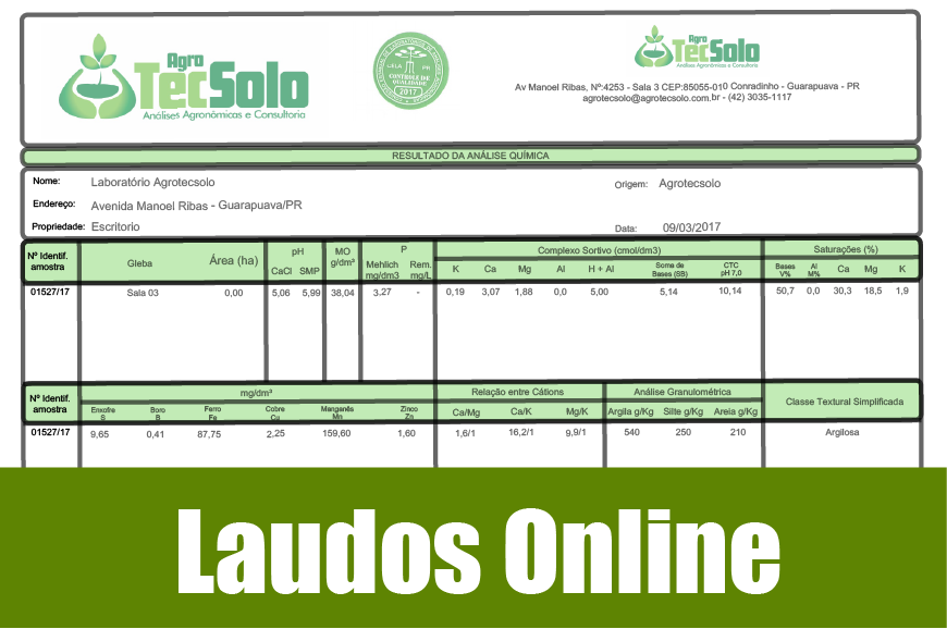 Laudos On Line